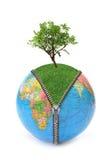 принципиальная схема относящая к окружающей среде Стоковое Фото