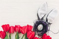 принципиальная схема пасха счастливая уши зайчика и стильное яичко в гнезде и tu Стоковое Фото