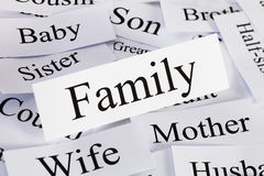 Принципиальная схема семьи Стоковое Фото