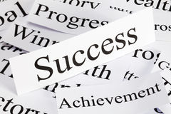 Принципиальная схема успеха Стоковое Изображение