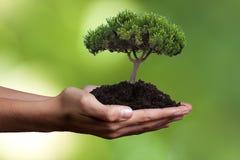 Принципиальная схема экологичности Стоковое фото RF