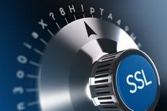 Принципиальная схема безопасностью интернета Стоковое Изображение RF