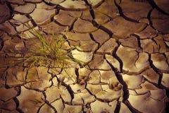 Принципиальная схема голода Стоковое фото RF