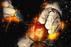 Принципиальная схема еды GMO Стоковое Изображение