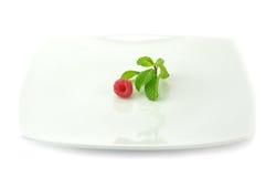 Принципиальная схема диеты Стоковое Изображение RF