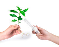 принципиальная схема идет зеленый цвет Сохраньте мир Стоковое фото RF
