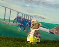 Принципиальная схема дня Валентайн Медведь игрушки с тюльпаном ждет ее frie Стоковые Фото