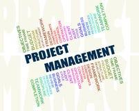 Принципиальная схема руководства проектом стоковые фото