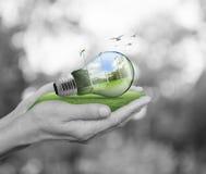 принципиальная схема экологическая Стоковое Изображение RF