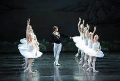 Принц в поисках белого лебедя его озера лебед влюбленност-балета Стоковая Фотография