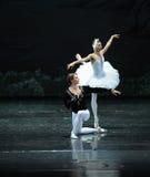 Принц и лебедя влюбленности рассказа- озеро лебед Берег озера-балета вечера поступка во-вторых Стоковое Изображение