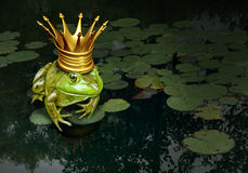 Принц Концепция лягушки Стоковые Изображения RF