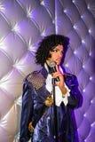 Принц музыкант и певица Стоковое фото RF