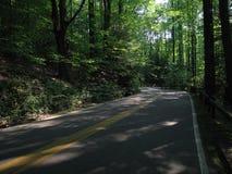 принятая дорога стоковое изображение rf
