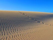 принятый песок Намибии 45 следов ноги дюн дюны пустыни самый старый где мир Стоковое Изображение RF