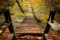 Приостанавливанный мост над потоком в падении стоковая фотография
