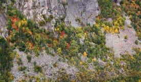 Приостанавливанная картина на скале стоковое изображение rf