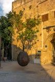 Приостанавливанное дерево Яффы оранжевое в старой Яффе Стоковое Фото