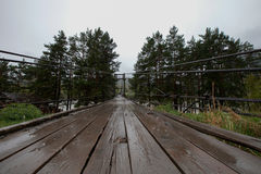 Приостанавливанный деревянный мост в дожде с деревьями на краях стоковые изображения