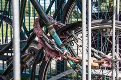 Припаркованная безопасность Bices Стоковые Изображения