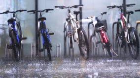 Припаркованная стойка общественного велосипеда арендная на асфальте в лить глубоком дожде Стоковое Фото