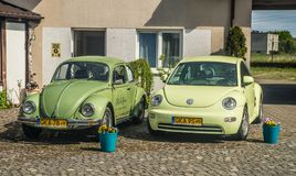 Припаркованные старый и новая модель жука VW Стоковое Изображение