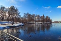 Припаркуйте в предместье Санкт-Петербурга на день зимы солнечный стоковые изображения rf