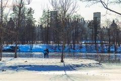 Припаркуйте в предместье Санкт-Петербурга на день зимы солнечный стоковое фото