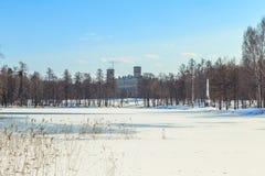 Припаркуйте в предместье Санкт-Петербурга на день зимы солнечный стоковая фотография