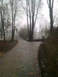 Припаркуйте в предыдущей весне, Kamenets-Podolskiy, Украине Стоковое фото RF