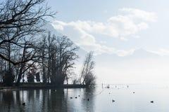 Припаркуйте на довольно озере зим на солнечный день Стоковые Изображения