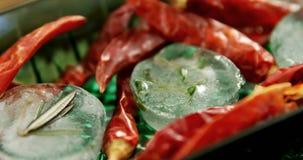 Приправленные кубы льда с травой и высушенным перцем красного chili 4k акции видеоматериалы