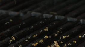 Приправляющ и слегка ударяющ стейк Нервюр-глаза на гриле, 4K видеоматериал