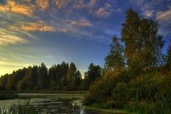 природа вечера светлая теплая Стоковые Изображения