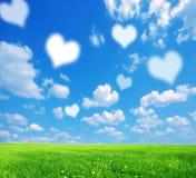 природа влюбленности предпосылки Стоковые Фотографии RF