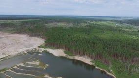 Природа в затопленном карьере в лесе сток-видео