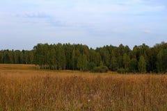 Природа в начале осени Стоковое фото RF