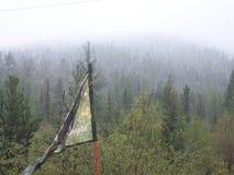 Природа в области Иркутска стоковые изображения rf