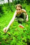 природа девушки Стоковые Изображения