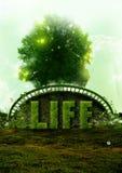 природа жизни eco принципиальной схемы Стоковые Фотографии RF