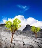 Природа земли фантазии стоковые фотографии rf