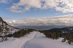 Природа зимы в высоком Tatras в Словакии Стоковые Изображения