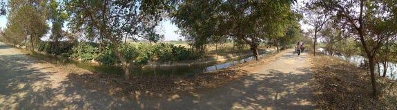 природа и дорога деревни в северной Индии стоковая фотография rf