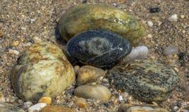 Природа как текстура - состав цвета мор камней на пляже стоковое изображение