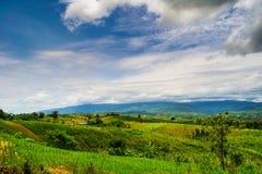 Природа ландшафта в Таиланде Стоковое Изображение RF