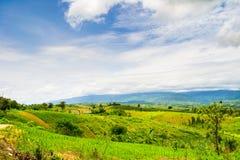 Природа ландшафта в Таиланде Стоковые Фотографии RF