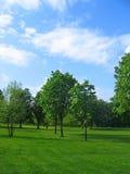 природа ландшафта предпосылки сельская Стоковые Фотографии RF
