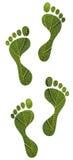 природа листьев зеленого цвета следов ноги принципиальной схемы людская сохраняет стоковое изображение rf
