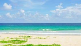 Природа моря пляжа побережья в солнце лета 4K, видеоклип UHD сток-видео