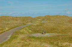 Природа на Texel Нидерланды Стоковые Фотографии RF
